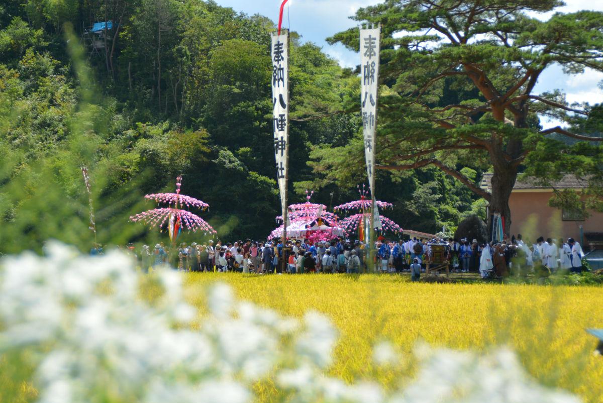 入谷八幡神社例大祭