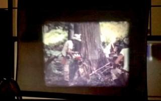 木を切り出す